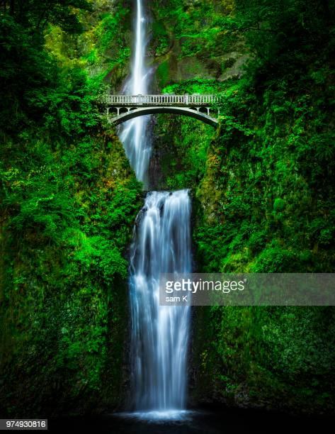 multnomah falls, oregon, usa - multnomah falls stock pictures, royalty-free photos & images