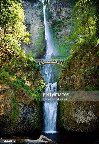 multnomah falls oregon waterfall - multnomah falls stock pictures, royalty-free photos & images