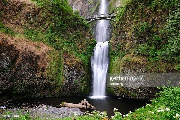 multnomah falls - multnomah falls stock photos and pictures