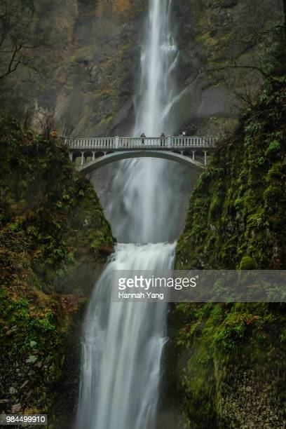 multnomah falls - hannah brooks stock pictures, royalty-free photos & images