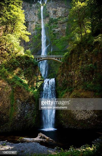 multnomah falls under columbia river gorge - multnomah falls stock photos and pictures