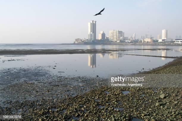 mumbai (bombay) coastline and skyline, india - argenberg stock-fotos und bilder