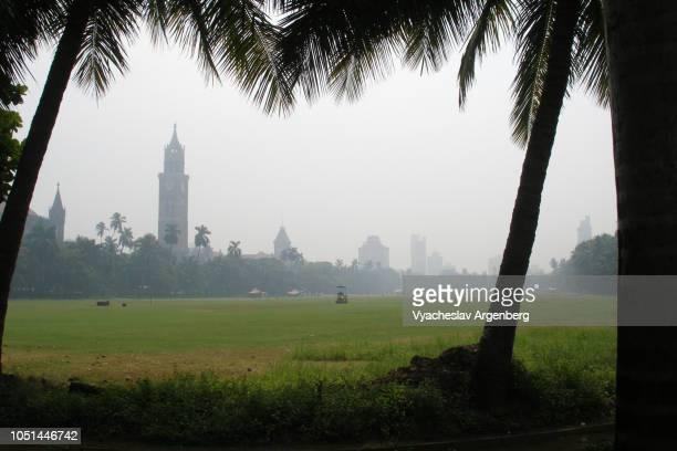 mumbai public park, british colonial style, tropical trees and fog, india - argenberg stock-fotos und bilder