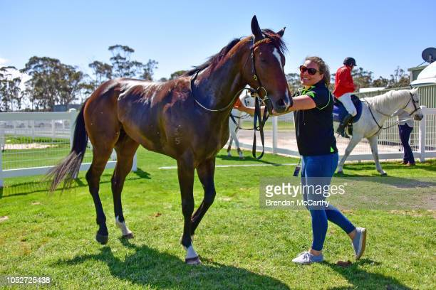 Mumbles after winning the Stawell Grampians Gate Caravan Park Maiden Plate at Stawell Racecourse on October 22 2018 in Stawell Australia