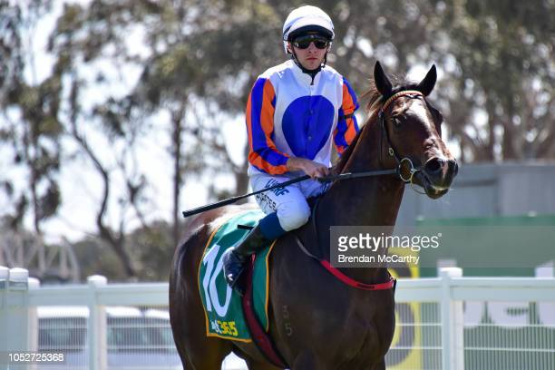 Mumbles ridden by Declan Bates returns to the mounting yard after winning the Stawell Grampians Gate Caravan Park Maiden Plate at Stawell Racecourse...