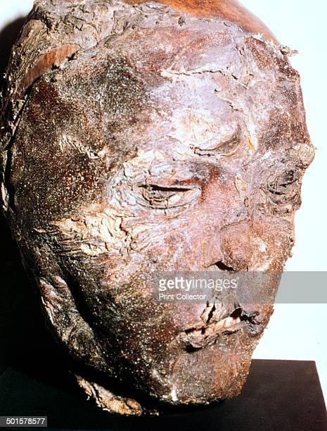 Mummified head of a Scythian chief from barrow 2 Pazyryk Altai The skull has been damaged by a battle axe blow 5th century BC
