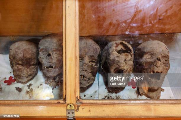 mummified heads of christian coptic martyrs - egyptian mummy stock pictures, royalty-free photos & images