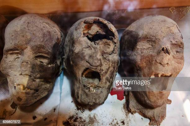 mummified heads of christian coptic martyrs - mummy - fotografias e filmes do acervo