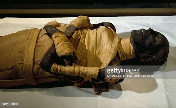 Mummy of Thutmose IV Detail Egyptian civilisation New Kingdom Dynasty XVIII Cairo Egyptian Museum