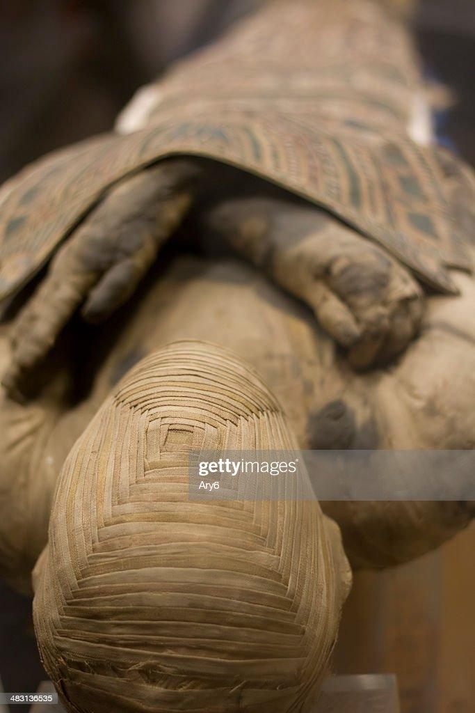 Múmia : Foto de stock