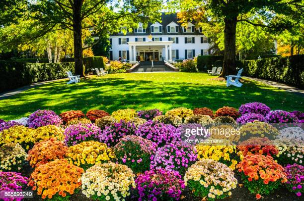 mums at the inn - inn stock pictures, royalty-free photos & images