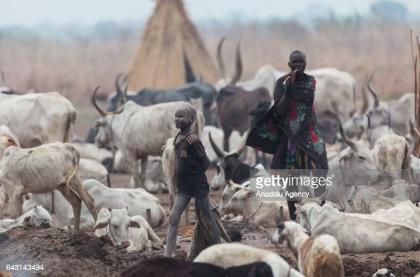 Mundari boys are seen with their AnkoleWatusi cattle in Terekeka town of Juba South Sudan on February 9 2017 Munda people a small ethnic group of...