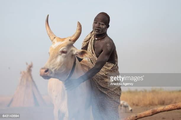 Mundari man is seen with his AnkoleWatusi cattle in Terekeka town of Juba South Sudan on February 9 2017 Munda people a small ethnic group of South...