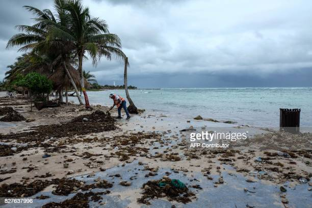 A municipal worker cleans the beach in Mahahual Quintana Roo State on August 8 2017 after tropical storm Franklin made landfall on Mexico's Yucatan...