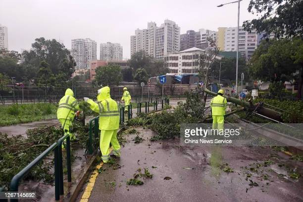 Municipal workers clear fallen tree branches from the road as typhoon Higos brings strong wind on August 19, 2020 in Macao, China.