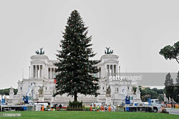 Municipal workers set up a giant Christmas tree opposite the Altare della Patria monument to King Vittorio Emanuele II on Piazza Venezia in downtown...