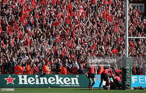 Munster fans celebrates the third try scored in injury time to seal the win during the Heineken Cup Semi Final match between Leinster and Munster at...