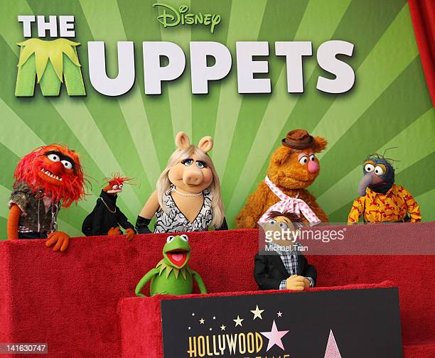 Muppet characters Kermit, Miss Piggy, Walter, Fozzie, Animal, Gonzo, Pepe attend the ceremony honoring The Muppets with a Star on The Hollywood...