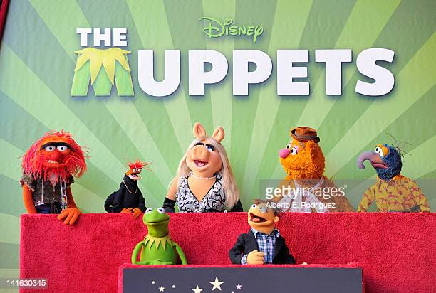 Muppets Animal Pepe Miss Piggy Fozzie Gonzo Kermit and Walter attend the Inimitable Muppets Hollywood Walk of Fame Star Ceremony on the Hollywood...