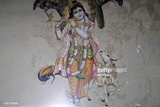 A mural of Hindu god Krishna with cow as a companion is displayed on a wall inside a farmer's home in Tundla Uttar Pradesh India on Tuesday Feb 19...