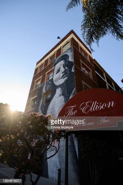 Mural of Lana Del Rey by Jonas Never aka @never1959 is seen at the Ellison estates in Venice on March 01, 2021 in Los Angeles, California.