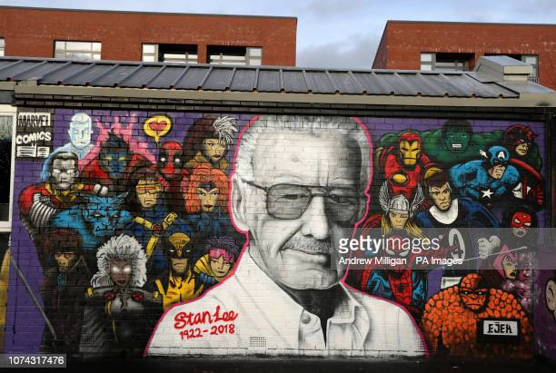 Mural of Marvel Comics co-creator Stan Lee alongside 22 super heroes painted by artist Danny McDermott, known as EJEK, at The Barn youth centre in...