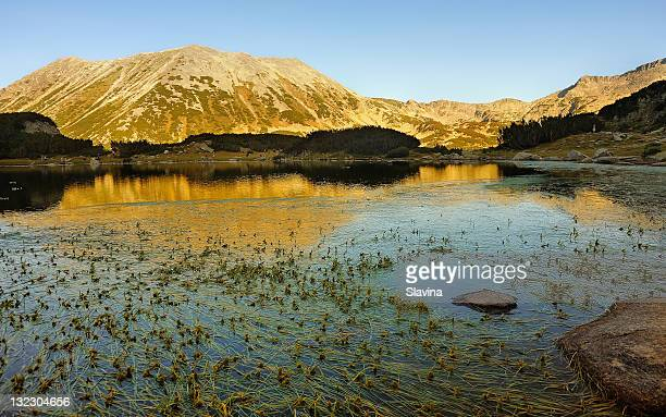 muratovo lake, pirin national park, bulgaria - pirin national park stock pictures, royalty-free photos & images