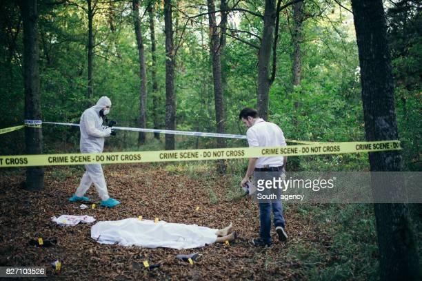 murder in the forest - dead body stock pictures, royalty-free photos & images