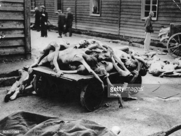 Murdered prisoners at the concentration camp Auschwitz. Poland. Photograph. Ca. 1943. .
