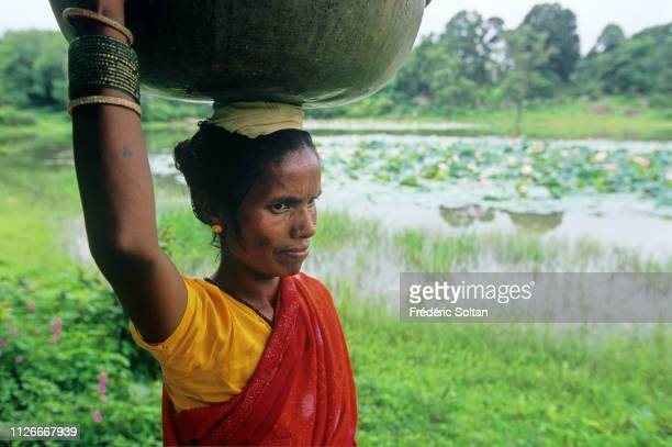Muria Tribe in Chhattisgarh Daily life of tribes in small villages and surrounding countryside near Kanker in Chhattisgarh on August 20 2007 in...