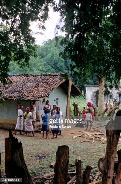 Muria Tribe in Chhattisgarh Muria preparing a traditional dance in a village in the Bastar District The Muria are one of the oldest original Indian...