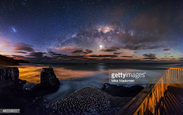 Muriwai Gannet Colony and the Milky Way