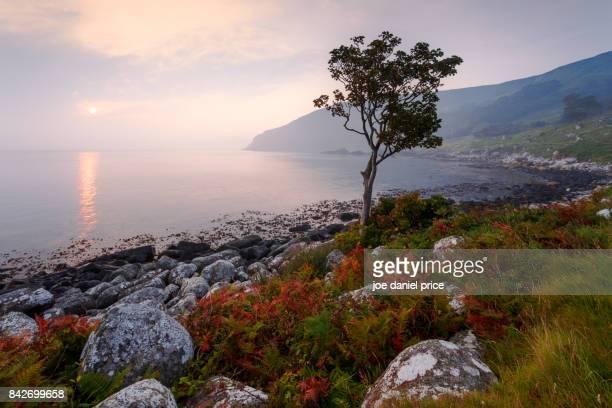 Murlough Bay, Ballycastle, Northern Ireland