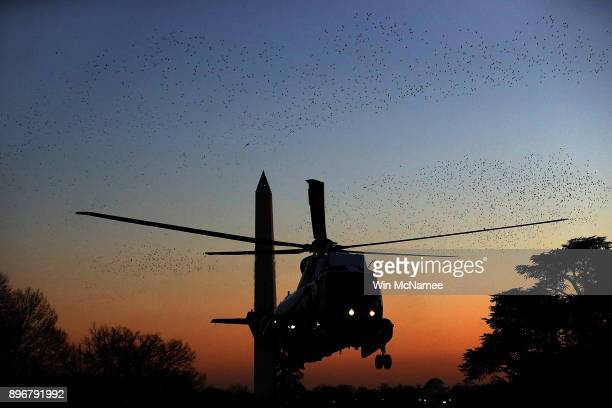 A murmuration of starlings passes in front of Marine One the presidential helicopter as US President Donald Trump returns to the White House on...