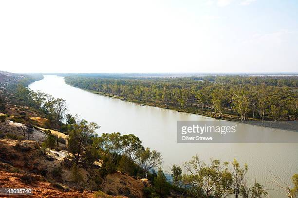 Murray River looking south from cliffs at Paringa.