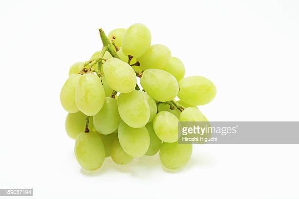Muscat grape