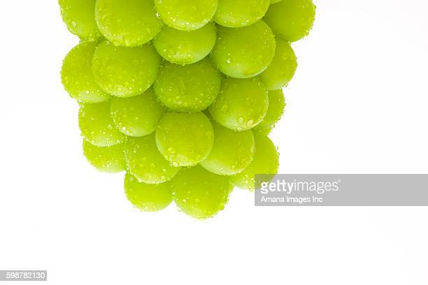 muscat grapes - muscat governorate stock pictures, royalty-free photos & images