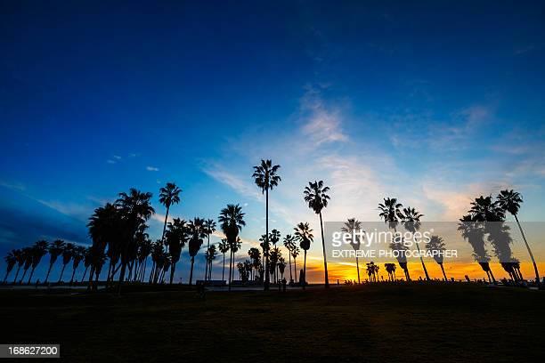 Muscle beach at dusk