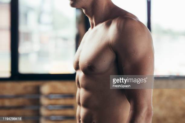 muscular athlete in a gym - chest torso stock pictures, royalty-free photos & images