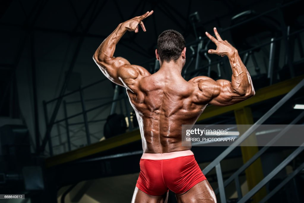 Muscular Back Stock Photo | Getty Images