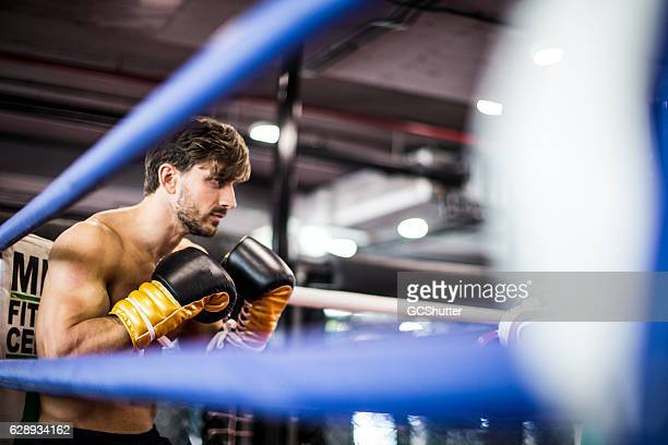 muscular boxer in a guard stance during a sparring session - boxing ring stock pictures, royalty-free photos & images