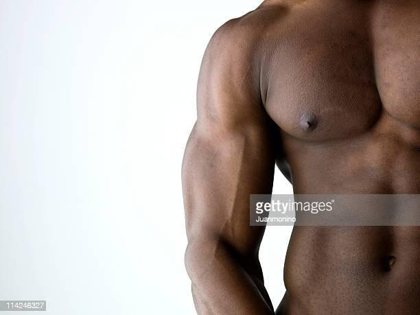 muscular build - biceps bildbanksfoton och bilder