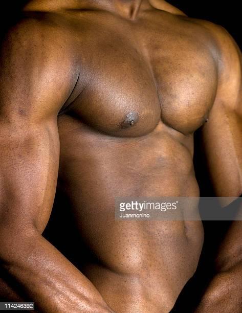 muscolare costruita - modella per artisti foto e immagini stock