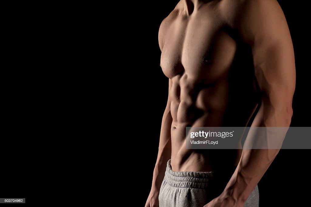 Muscular male torso : Stock Photo