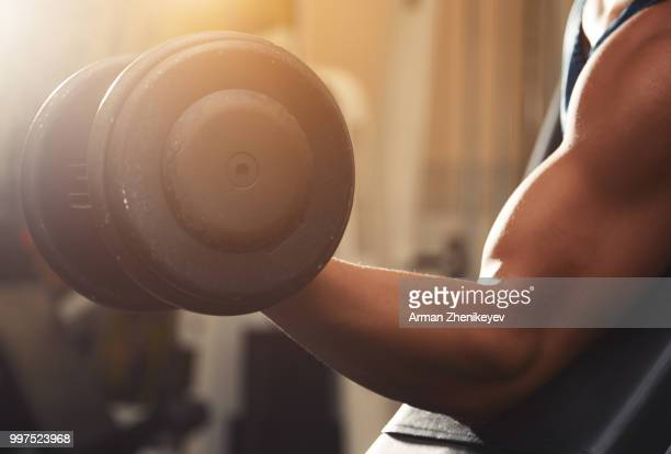 muscular man lifting dumbbell - hand weight stock pictures, royalty-free photos & images