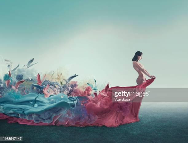 muse - erotikbilder stock-fotos und bilder