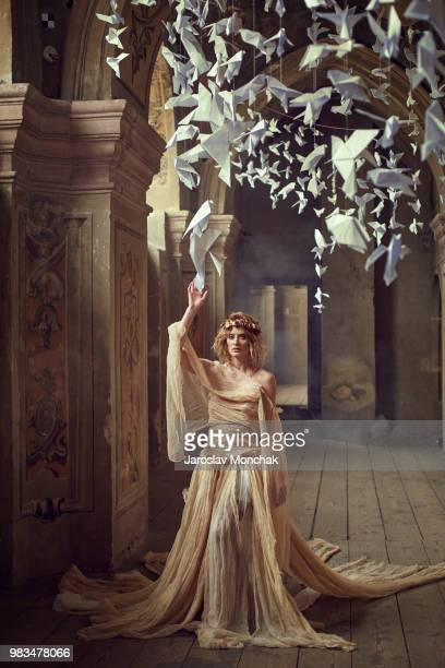 muse - ukrainian angel stockfoto's en -beelden