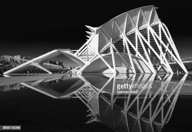 museu de les ciències príncipe felipe (monochrome, no people, horizontal, reflection), valencia, spain. - fish skeleton stock photos and pictures