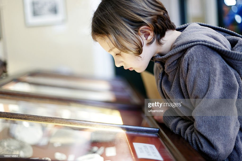Museum display cabinet : Stock Photo