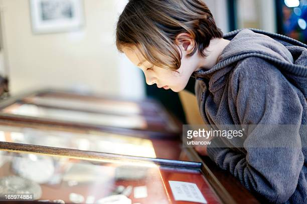 museum display cabinet - museum stock pictures, royalty-free photos & images